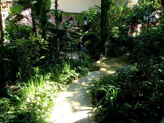 fotos jardins tropicais : fotos jardins tropicais:Galeria de Jardins